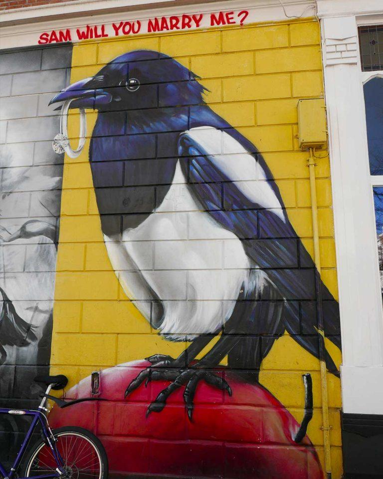 murales_bird